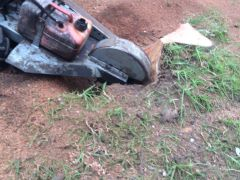 Stump Removal and Grinding Services